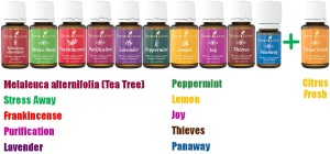 Young-Living-Essential-Oils-Premium-Starter-Kit